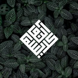 fidznet logo design3